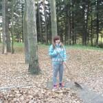 3_XI_15_jesienne_praktyki_SUHSGiIZ_17